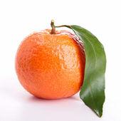 Beyaz izole clementine — Stok fotoğraf