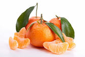 Fresh citrus fruit — Stock Photo