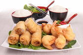 Chinese food, spring roll and rice — Stock Photo