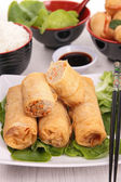 Fried spring roll — Stock Photo