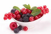 Assortment of berries fruits — Stock Photo