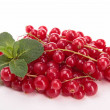 Stock Photo: Isolated redcurrant