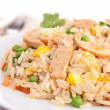 Chicken fried rice — Stock Photo #21724119