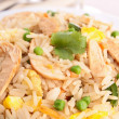 Chicken fried rice — Stock Photo #21724329