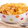 Bowl of cereal — Stock Photo #22186521