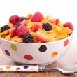 Bowl of cereal with berries fruits — Stock Photo #22186677