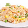 Fried rice and chicken — Stock Photo #22653951