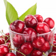 Cherry- berry fruit — Stock Photo #27159823