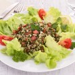Lebanese tabbouleh — Stock Photo #30740129