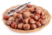 Assortment of nuts — Stock Photo
