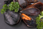 Pile of cooked mussels and parsley — Stock Photo