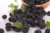 Fresh blackberry — Stock Photo