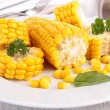 Plate of corn — Stock Photo
