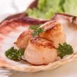Stock Photo: Seared scallop presented on scallop shell.