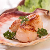 Seared scallop presented on a scallop shell. — Stock Photo