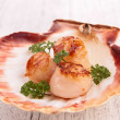 Seared scallop — Stock Photo