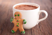 Chocolate with gingerbread — Stock Photo