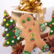 Christmas gingerbead — Stock Photo