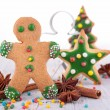 Gingerbread cookie — Stock Photo #36044583