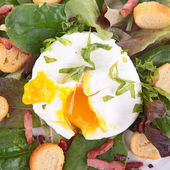 Salad with egg, crouton and bacon — Stock Photo