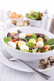 Vegetable salad with egg — Stock Photo