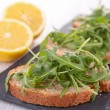 Bread and arugula — Stock Photo #40851185