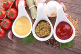 Condiment, mayonnaise,pesto and ketchup sauce — Stock Photo