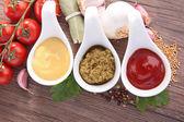 Condiment, mayonnaise,pesto and ketchup sauce — Stock Photo