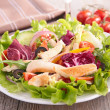 Vegetable salad wich chicken — Stock Photo #44672053