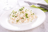 Rice and parsley — Stockfoto