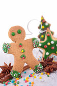 Ginger biscuit — Stock Photo