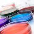 Color liquid in old plastic petri dishes — Stock Photo #20471971
