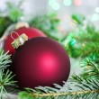 Closeup of christmas balls and christmas tree — Stock Photo #30401889