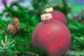 Closeup of Christmas ball from Christmas tree — Stock Photo