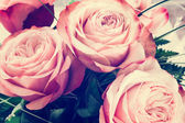 Romantic pink roses vintage background — Stock Photo