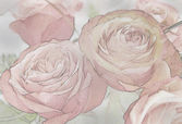 Vintage rose on watercolour background — Stock Photo