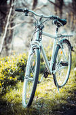 Vintage old bicycle in field. — Stock Photo