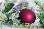 Christmas ball and green spruce branch on  white — Stock Photo