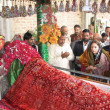 Stock Photo: Sindh Auqaf Minister, SharmilFarooqi offers Duat Shrine of Sakhi Abdul Wahab Shah Jilani (R.A)