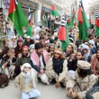 Stock Photo: Protest against assassination attack on Sipah-e-Sahableader Aurangzeb Farooqi