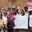 Stock Photo: Activists of Tehreek-e-Insaf (PTI) chant slogans against MuttehdQaumi Movement (MQM) Chief, Altaf Hussain during protest demonstration
