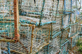 Lobster pot — Stock Photo