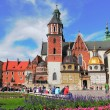 St. Wenceslas and the Stanislaus Cathedral - Stock Photo