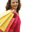 Christmas Shopping — Stock Photo #25113089