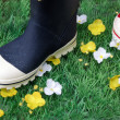 Colorful children's boots on the artificial turf — Stock Photo