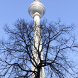 Stock Photo: Berlin TV Tower