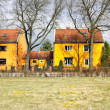 Stock Photo: Parrot settlement in Berlin, Germany