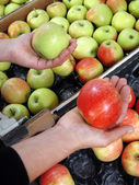 Choose a kind of apple — Stock Photo