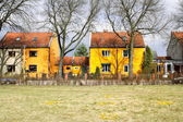 Parrot settlement in Berlin, Germany — Stock Photo