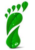 Green footprint — Stock Vector